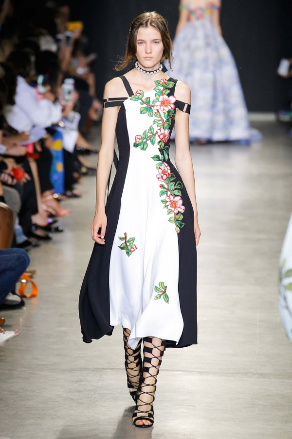 Andrew GN 5
